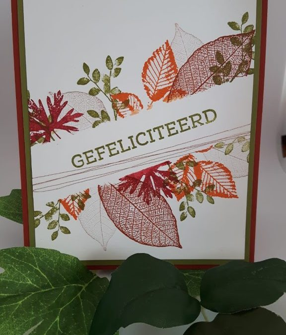Herfsttaferelen met Puur Natuur (Rooted in Nature)