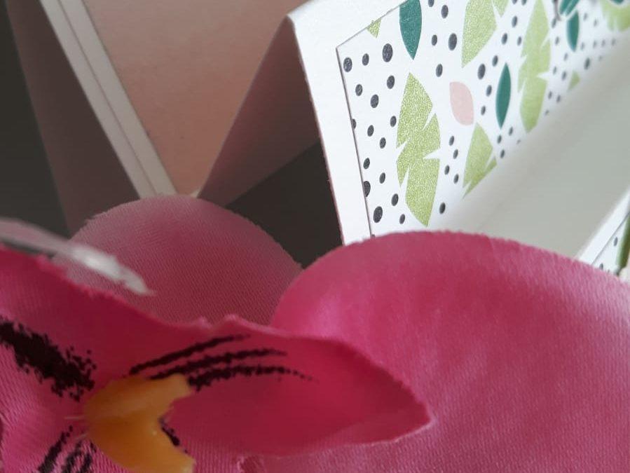 Vlinderdans trapkaart