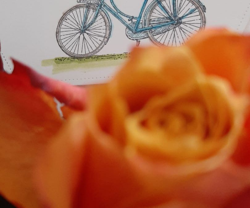 Frisse wind op de fiets