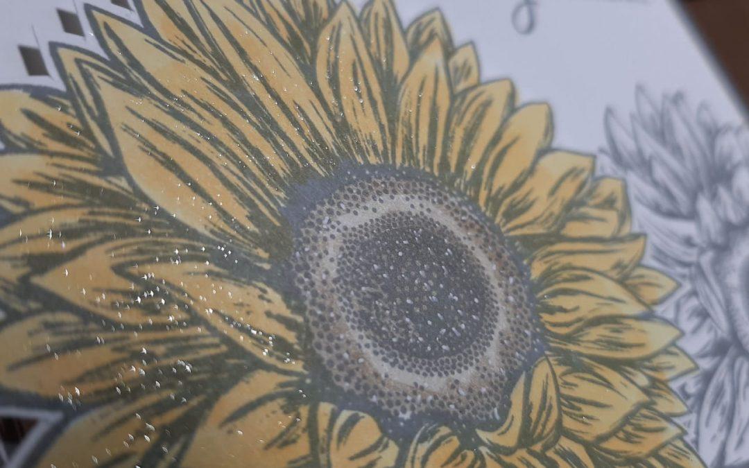 Bedankt Bijzondere Zonnebloemen